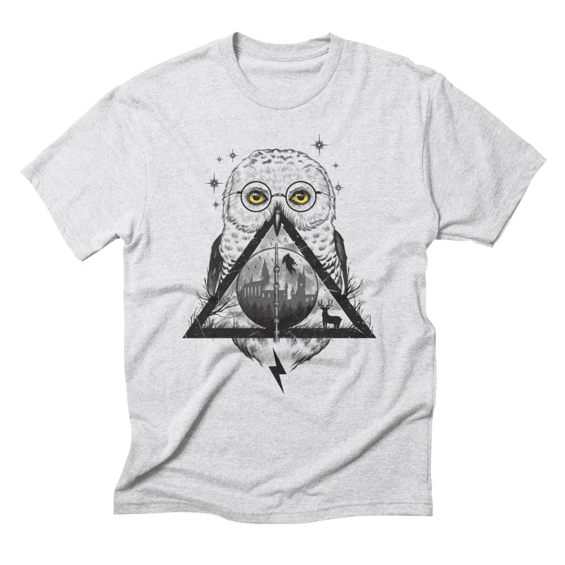 Owls and Wizardry Men's Triblend T-Shirt by Vincent Trinidad