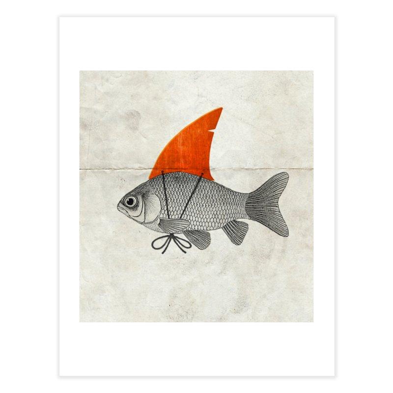 Shark Fin Goldfish Home Fine Art Print by Vin Zzep's Artist Shop