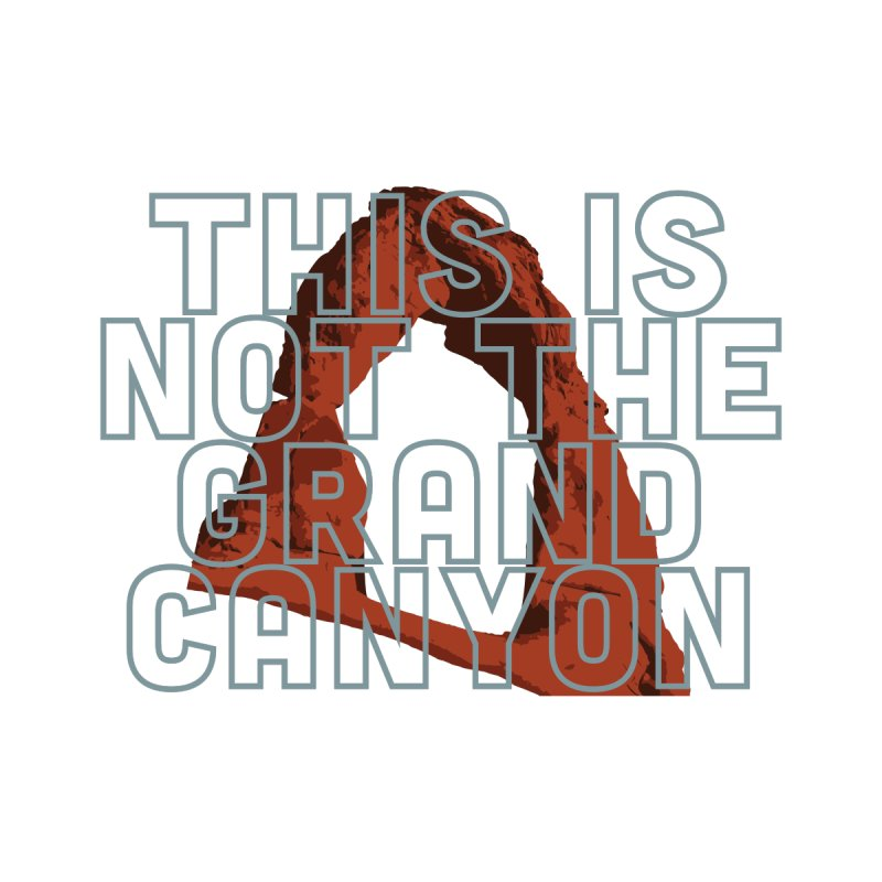 Delicate Arch Is Not The Grand Canyon Men's T-Shirt by Virtual Running Club Merch