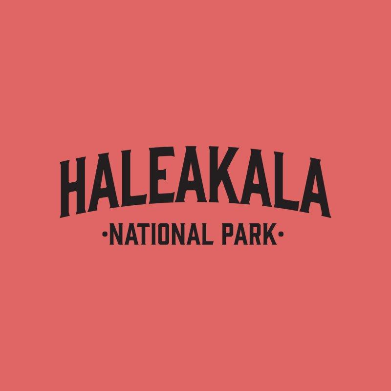 Haleakalā National Park Men's T-Shirt by Virtual Running Club Merch