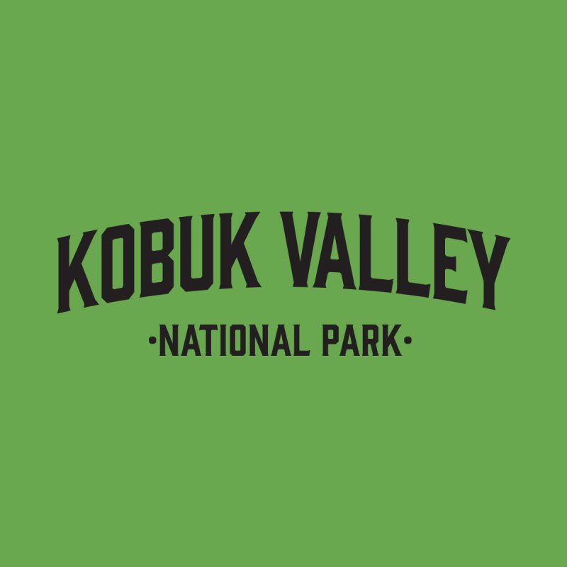Kobuk Valley National Park Men's T-Shirt by Virtual Running Club Merch