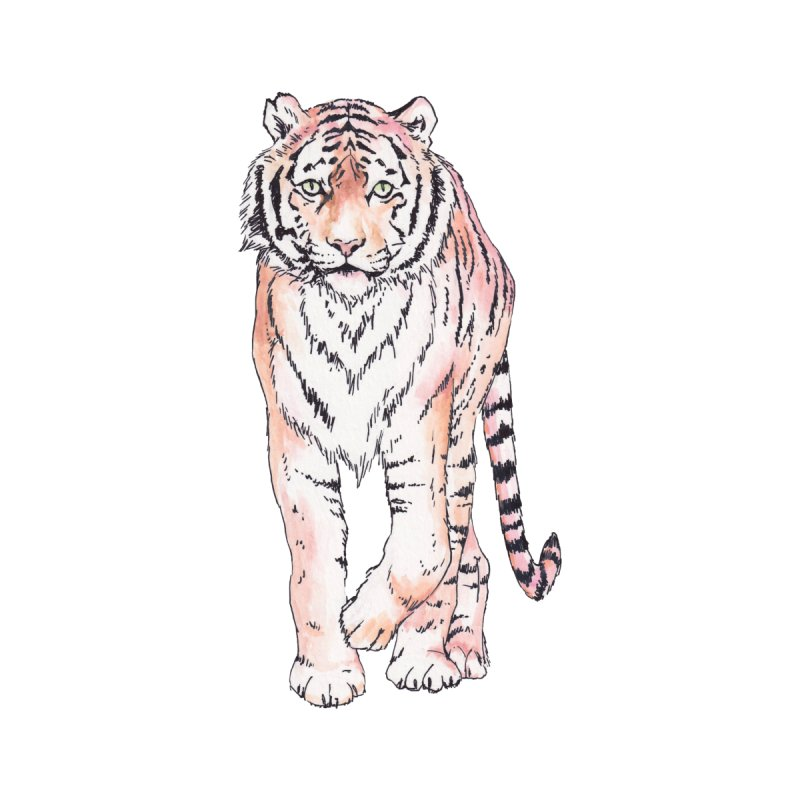 Roaming Watercolor Tigers by Wandering Laur's Artist Shop