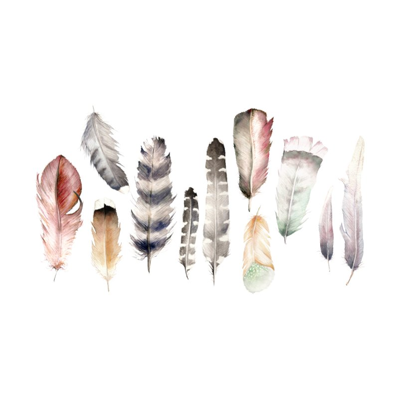 Watercolor feathers by Wandering Laur's Artist Shop