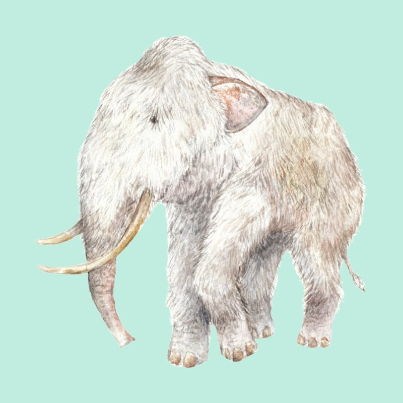 Watercolor Woolly Mammoth by Wandering Laur's Artist Shop