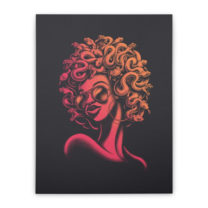 Funky Medusa II Home Stretched Canvas by Waynem