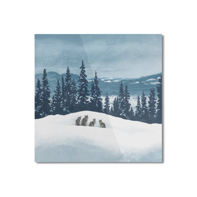 Frozen North Home Mounted Aluminum Print by Waynem
