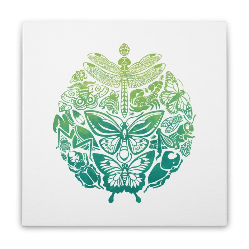 Bugs & Butterflies: Green Home Stretched Canvas by Waynem