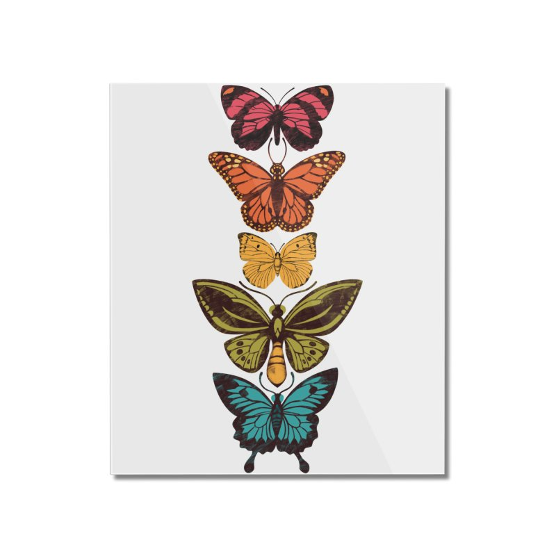 Butterfly Spectrum Home Mounted Acrylic Print by Waynem
