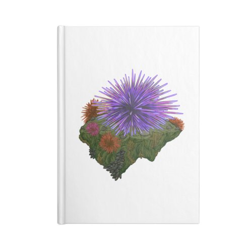 image for Sea Urchin