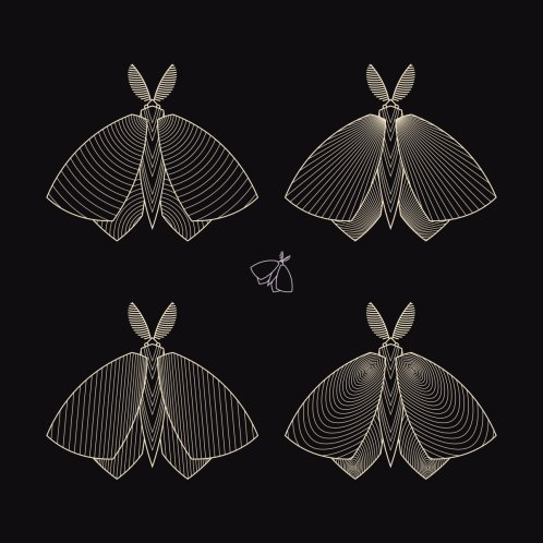 Design for Geometric Ornamental Moire Cute Moths Butterflies Night Insects