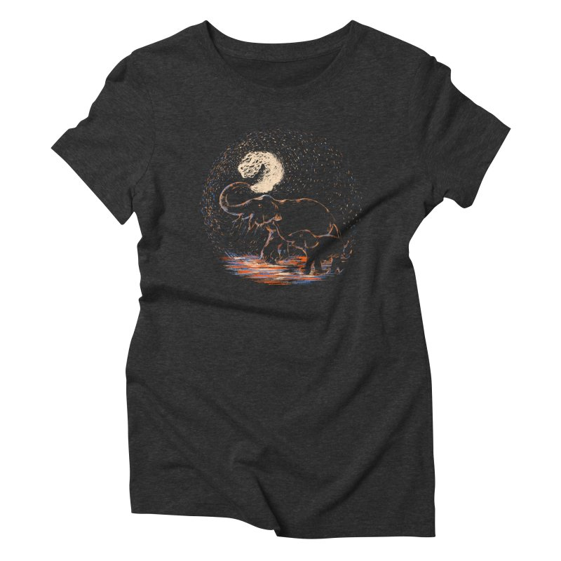 MIDNIGHT FUN Women's Triblend T-Shirt by Winterglaze's Artist Shop