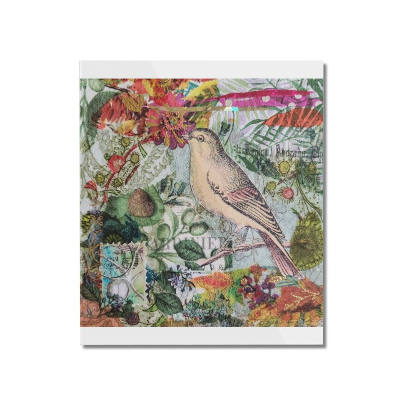 Botanical Songbird Original Designer Collage Home Mounted Acrylic Print by Wise Owl Artworks Artist Shop
