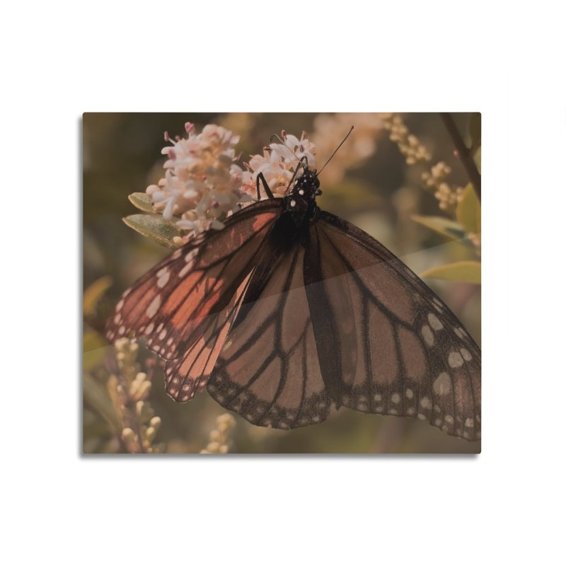 Natures Beauty, 1  Home Mounted Aluminum Print by #woctxphotog's Artist Shop