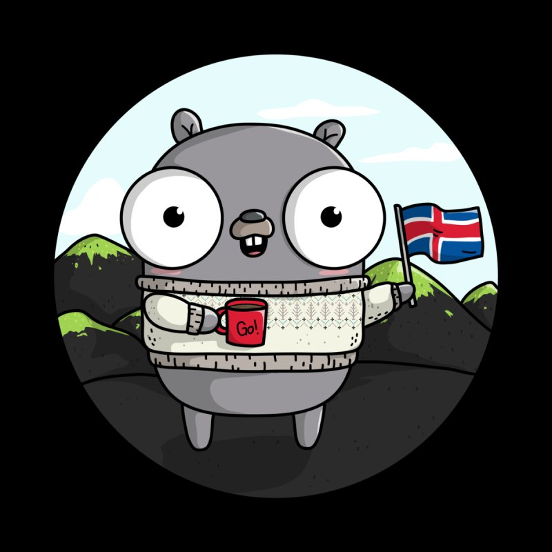 GopherCon Iceland by Women Who Go