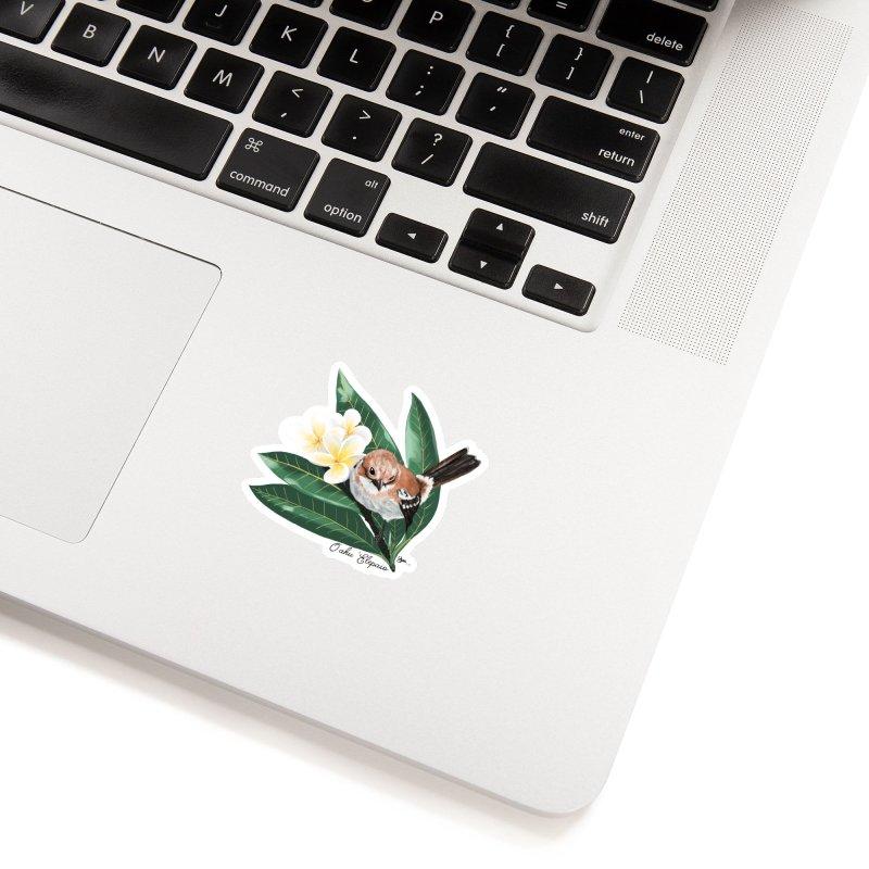 Oahu Elepaio Accessories Sticker by Michelle Wynn's Artist Shop