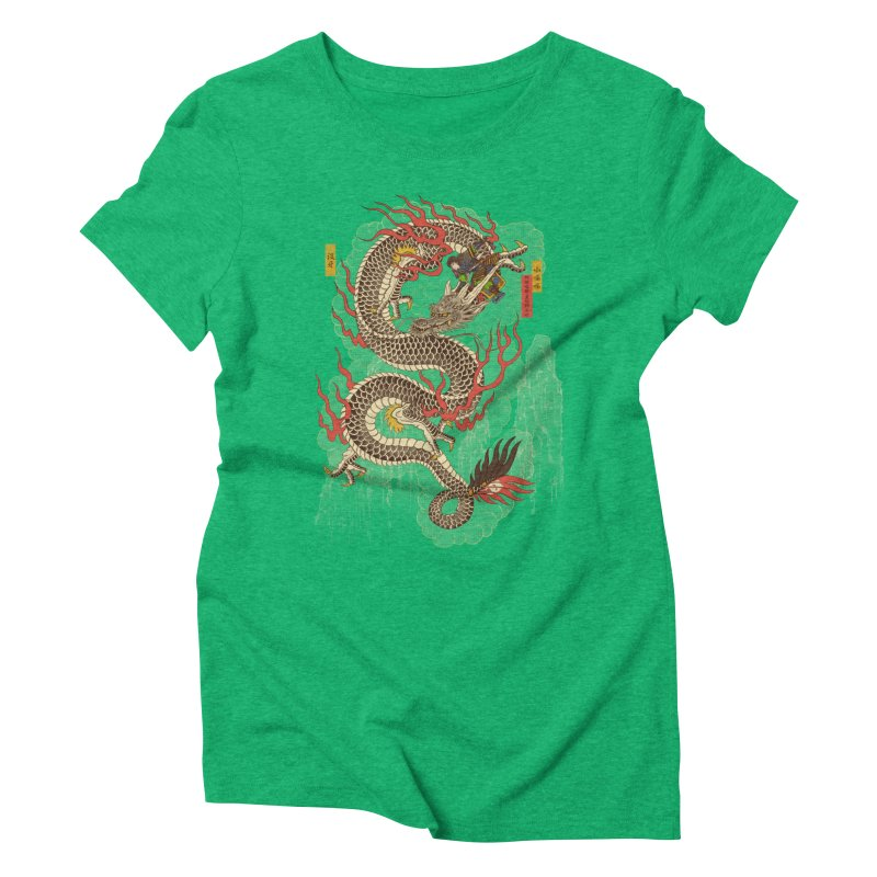 The Dragon Trainer Women's Triblend T-Shirt by xiaobaosg