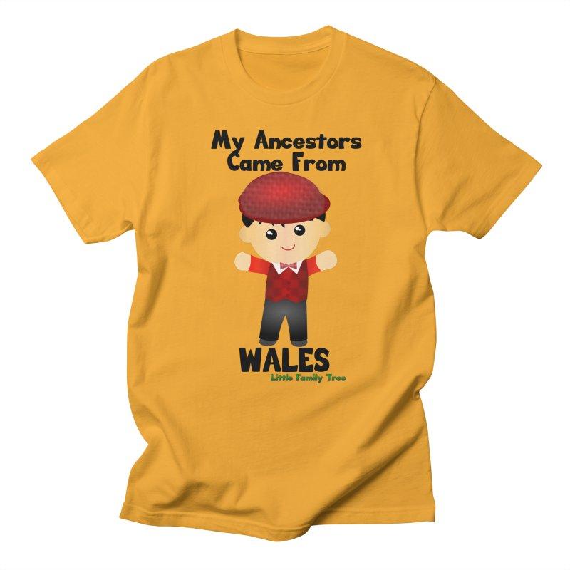 Wales Ancestors Boy Men's T-shirt by Yellow Fork Tech's Shop