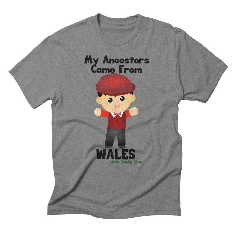 Wales Ancestors Boy Men's Triblend T-shirt by Yellow Fork Tech's Shop