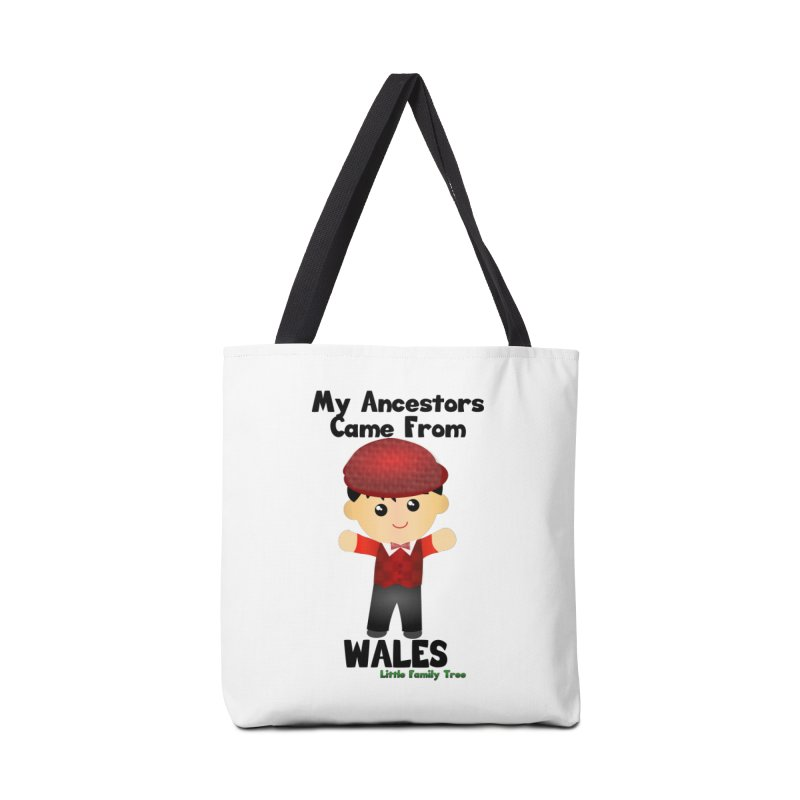 Wales Ancestors Boy Accessories Bag by Yellow Fork Tech's Shop