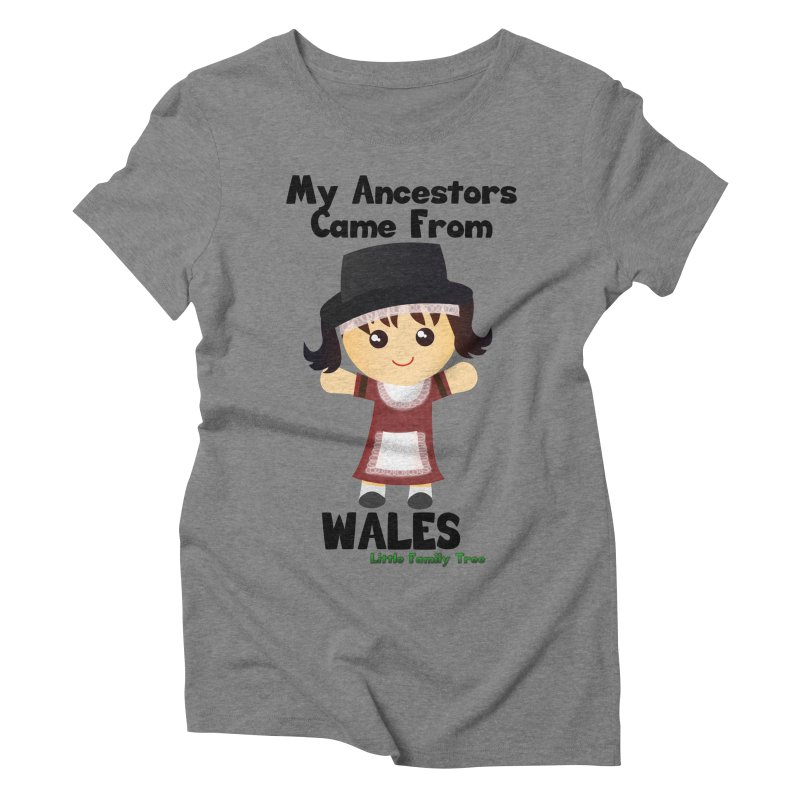 Wales Ancestors Girl Women's Triblend T-Shirt by Yellow Fork Tech's Shop