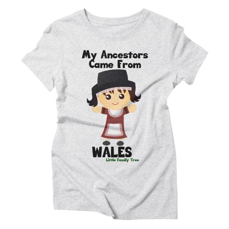 Wales Ancestors Girl Women's Triblend T-Shirt by Yellow Fork Tech's Shop