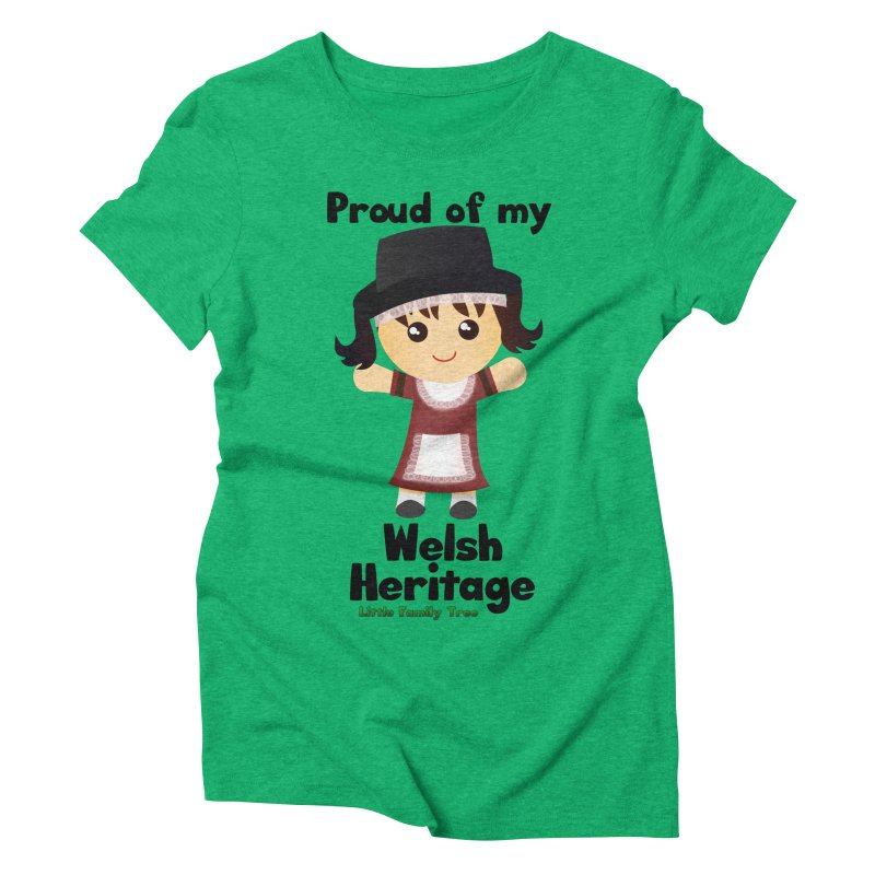 Welsh Heritage Girl Women's Triblend T-Shirt by Yellow Fork Tech's Shop