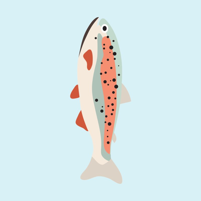 Trout by Yellow Studio · the Shop!