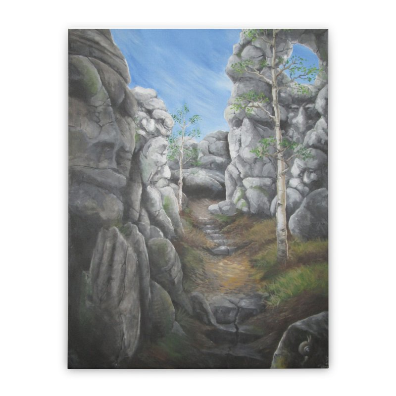 Rock Faces Home Stretched Canvas by Yodagoddess' Artist Shop