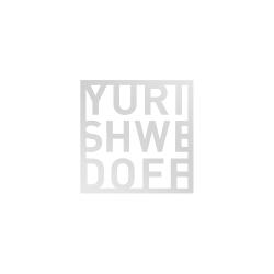 yurishwedoff Logo