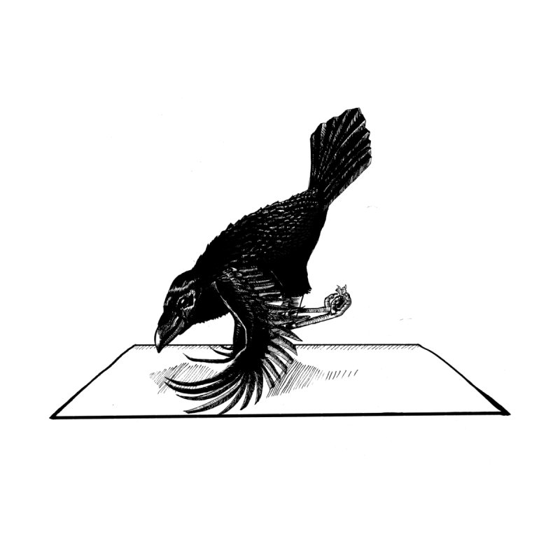 Crow Pose Men's T-Shirt by zenyogagarage's Artist Shop