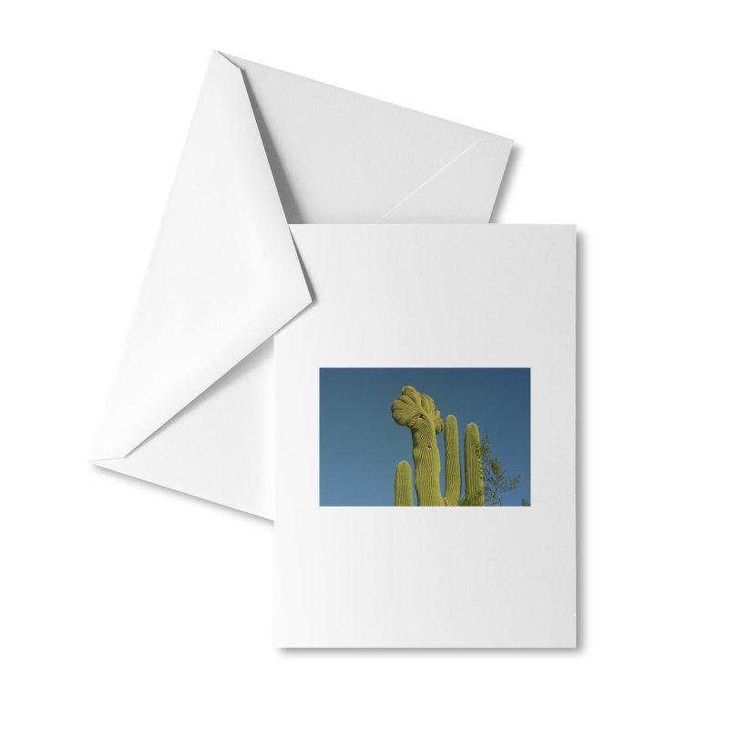 Cactus Man Accessories Greeting Card by zoegleitsman's Artist Shop