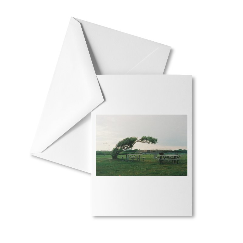 Bent Tree Accessories Greeting Card by zoegleitsman's Artist Shop