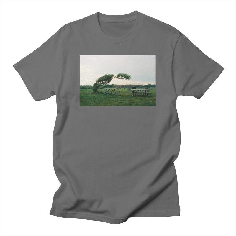Bent Tree Women's T-Shirt by zoegleitsman's Artist Shop