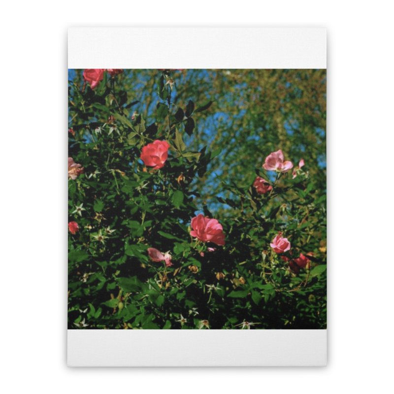 Flowers Home Stretched Canvas by zoegleitsman's Artist Shop