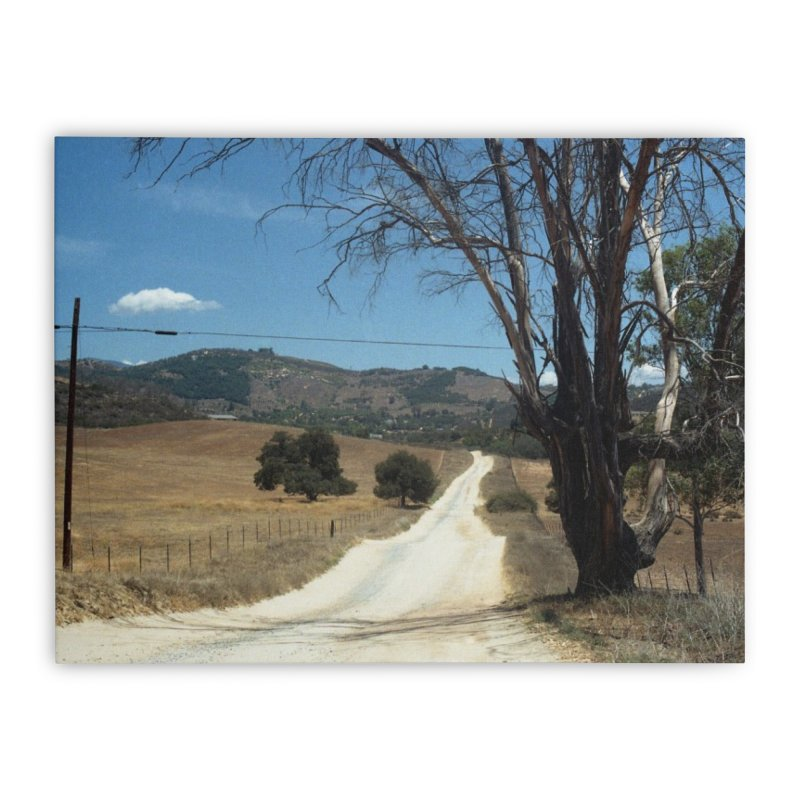 Dusty Road Home Stretched Canvas by zoegleitsman's Artist Shop