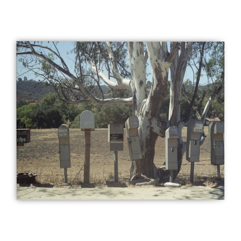 San Diego Mailboxes Home Stretched Canvas by zoegleitsman's Artist Shop
