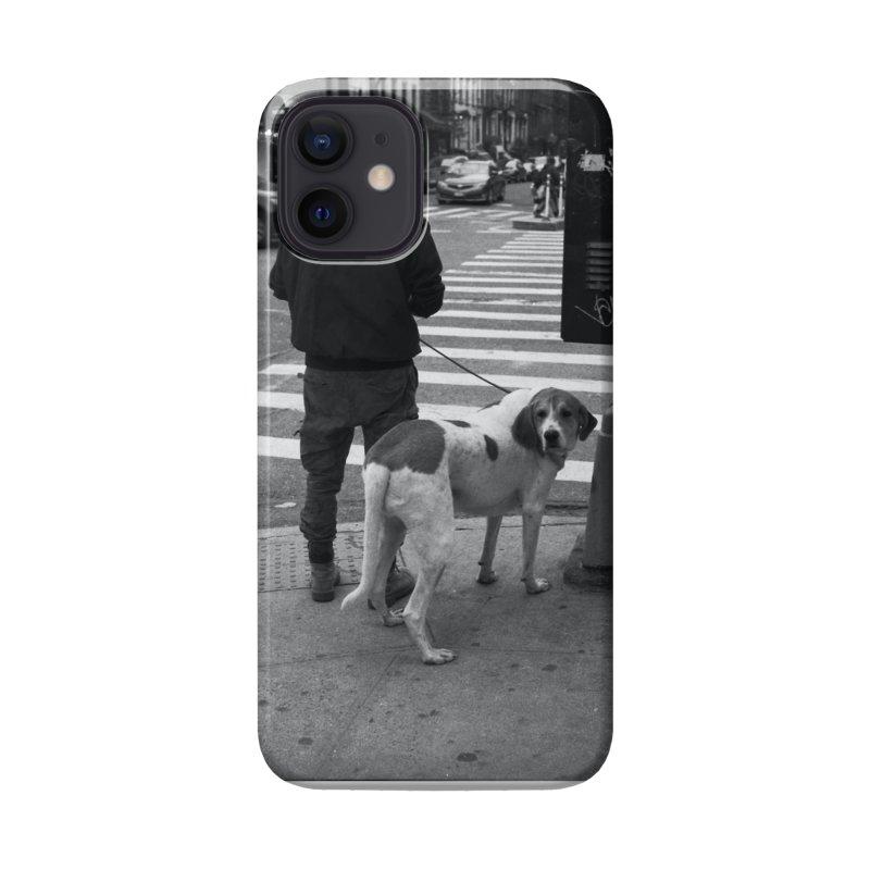 Dog Walk Accessories Phone Case by zoegleitsman's Artist Shop