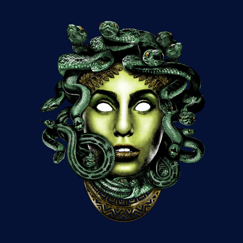 Medusa by Anthony Petrie Print + Product Design