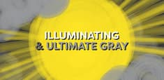 Illuminating / Ultimate Gray