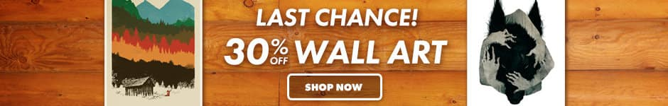 Last chance! 30% off wall art. Shop now.