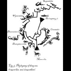 DragonPhylogeny's Profile Picture