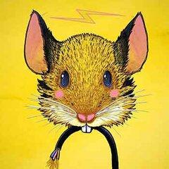 choubaka360's Profile Picture