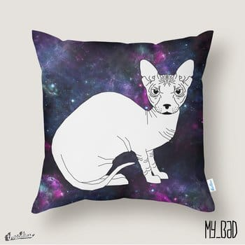 SPACE SPHYNX CAT