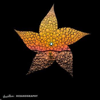 Sunset Starfish