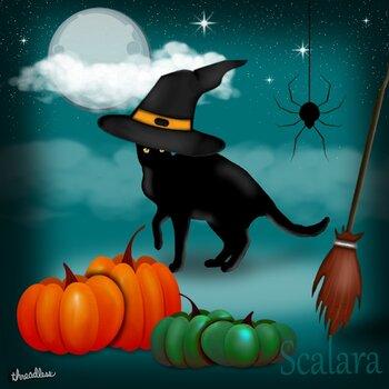 Black Cat in a Witch Hat