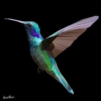 Geometric  humming-bird