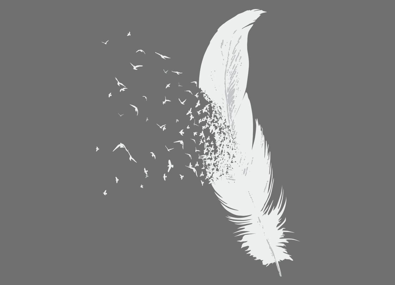 Wings – Breasts – Birds