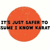 It's Just Safer to Assume I Know Karate - small view
