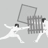 Fencing - small view