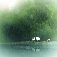 Secret Lake - small view